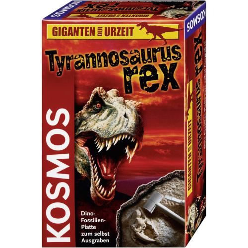 Ausgrabungsset Tyrannosaurus Rex.