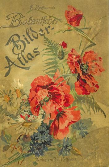 Carl Hoffmann's Botanischer Bilder-Atlas.