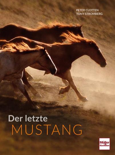 Der letzte Mustang.
