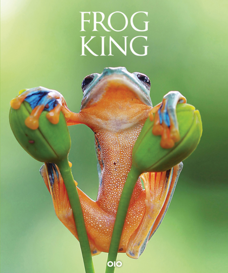 Frog King. Der Frosch. Symbol der bedrohten Natur.