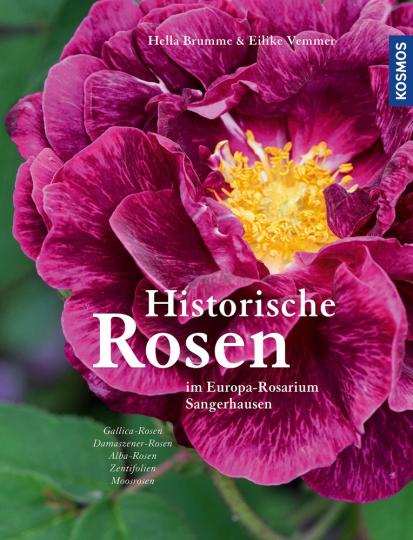 Historische Rosen im Europa-Rosarium Sangerhausen.