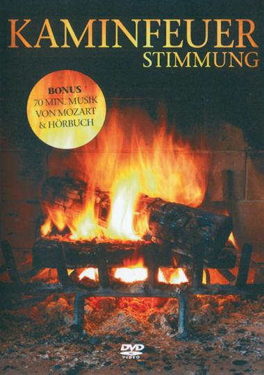 Kaminfeuer-Stimmung DVD
