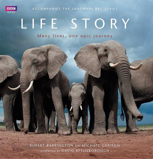 Life Story. Many Lives, one epic journey. Buch zur bahnbrechenden BBC-Serie.