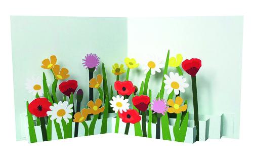 Pop-up-Grußkarte »Gemischte Wildblüten«.
