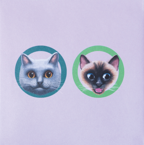 Pop-up-Grußkarte »Zwei Katzen am Näpfchen«.