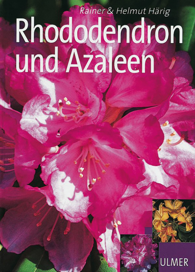 Rhododendron und Azaleen
