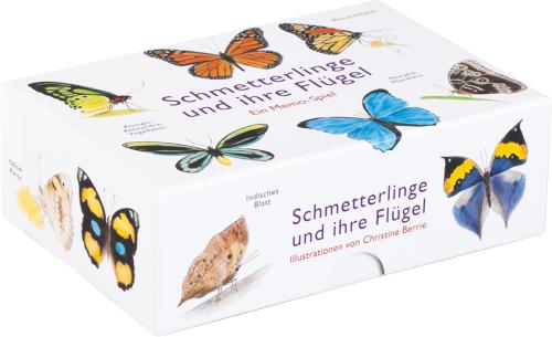 Schmetterlinge und ihre Flügel.