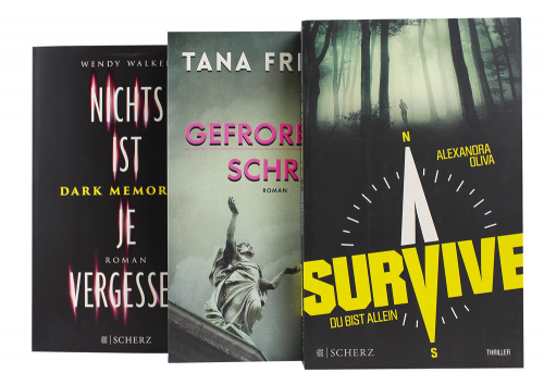Spannungs-Thriller Paket 3 Bände