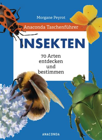 Taschenführer Insekten. 70 Arten entdecken und bestimmen.