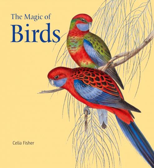 The Magic of Birds. Die Magie der Vögel.