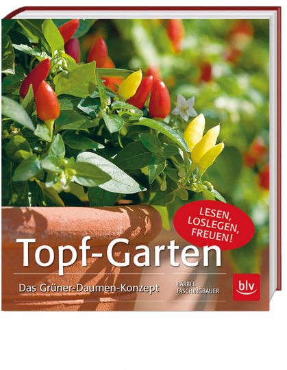Topf-Garten - Das Grüner-Daumen-Konzept