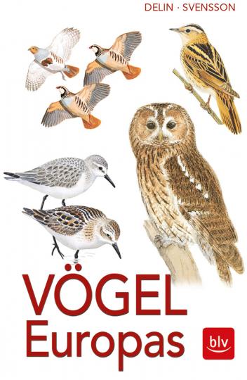 Vögel Europas. Alle Arten.