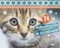 24 Weihnachtsgrüße für Katzenfreunde Bild 1