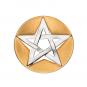 Anhänger Pentagramm - Silber teilvergoldet, mit Kautschukband Bild 1