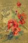 Carl Hoffmann's Botanischer Bilder-Atlas. Bild 1