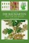 Die Baumarten Deutschlands erkennen und bestimmen. Bild 1