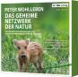 Peter Wohlleben. Das geheime Netzwerk der Natur. Wie Bäume Wolken machen und Regenwürmer Wildschweine kontrollieren. mp3-CD. Bild 1
