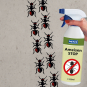 Ameisen-Stop-Spray, 500 ml. Bild 2