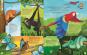 Der Klang der Tiere. In den Lüften. Sound-Buch mit 9 außergewöhnlichen Vogelstimmen. Bild 2