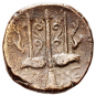 Münze Poseidon Bronze alt 274-216 v. Chr. Bild 2