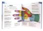Praxisbuch Selbstdiagnose - Beschwerden verstehen und gezielt behandeln Bild 2