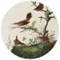 Briefbeschwerer Audubon »Zaunkönige«. Bild 3