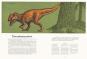 Das Museum der Dinosaurier. Eintritt frei! Bild 3
