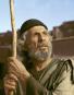 Die Bibel. 17 DVDs. Bild 3