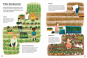 Ein Jahr auf dem Bauernhof. Kuhstall, Maisfeld, Apfelernte. Entdecke das Leben auf dem Land. Bild 3