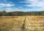 Meine Lieblingsausflüge Bayerischer Wald. 30 Entdeckertouren zu malerischen Städten und Landschaften. Bild 3