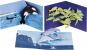 Pop-up-Grußkarten-Set »Das Meer«. Bild 3