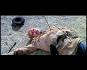 Sitting Bull DVD Bild 3