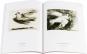 Frieden. Von der Antike bis heute. 5 Bände. Bild 4