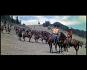 Sitting Bull DVD Bild 4