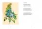 Wurzelwerk. Die Palette des wilden Gartens. Bild 4