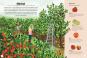 Ein Jahr auf dem Bauernhof. Kuhstall, Maisfeld, Apfelernte. Entdecke das Leben auf dem Land. Bild 5