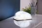 Gingko Smart Booklight Buchlampe klein hell Bild 5