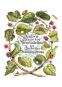 Maria Sibylla Merian. Der Raupen wundersame Verwandlung und sonderbare Blumennahrung. 2 Bände. Bild 5