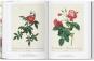 Redouté. Das Buch der Blumen. Bild 5
