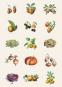 Tier- und Pflanzendarstellungen. Sticker und Etiketten. Bild 5